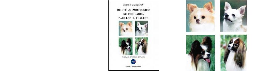 Obiettivo Zootecnico su Chihuahua Papillon & Phalène