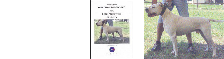 Obiettivo zootecnico sul Dogo argentino in Italia.  Postille dal 1976.