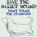 Lo standard del Basset Hound