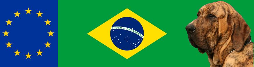 Raduno Fila Brasileiro UNIFILA 2015 – Europa e Italia