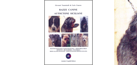 Razze canine autoctone siciliane