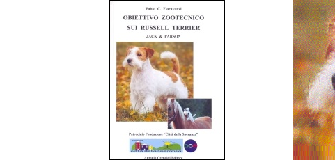 Obiettivo zootecnico sui Russell Terrier: Jack & Parson