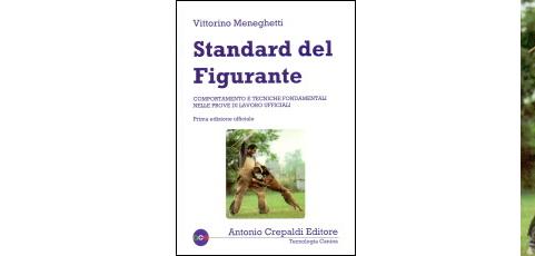 Standard del figurante