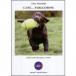 Cane … Parliamone. Aspetti di etologia canina