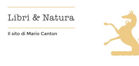 Il nuovo sito personale di Mario Canton