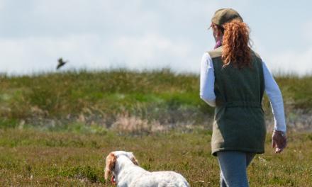 Benessere e gestione del cane da lavoro