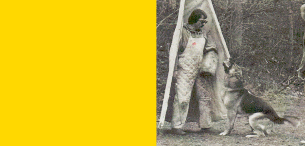 Der Scutzhund. Addestramento del cane da difesa.