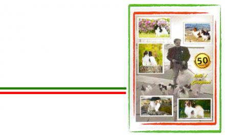 PAPILLON & PHALÈNE – ALBO D'ORO – 50 ANNI DI CAMPIONI IN ITALIA